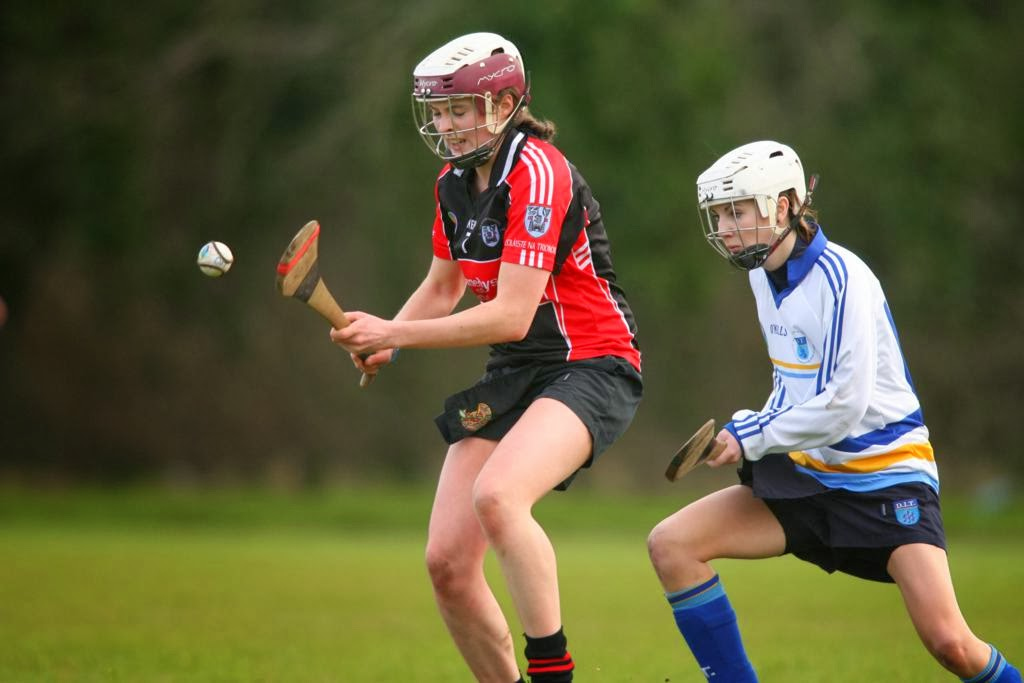 DIT Camogie For Double