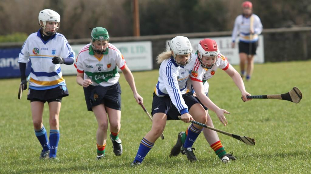 Camogie win Purcell Cup